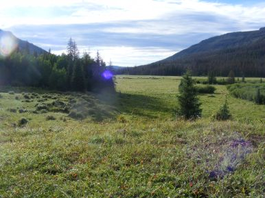 Morning in Second Meadows