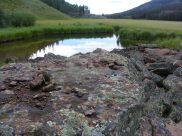 Second Meadows pond