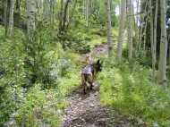 Leah and Draco on the Notch Trail