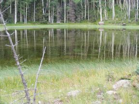 Pond on the Valle Victoria Trail, in the aspen forest