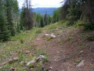 The Valle Victoria Trail near the mesa top