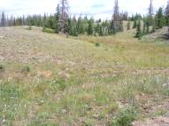 Mesa top along Valle Victoria Trial in the South San Juan Wilderness