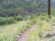 Elk Creek below the Notch Trail