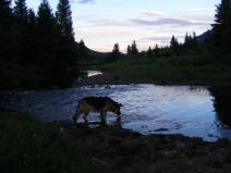 Leah at sunset in Elk Creek