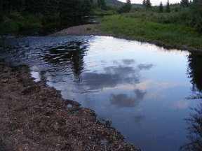 Dusk's clouds caught in a reflection off the surface of Elk Creek