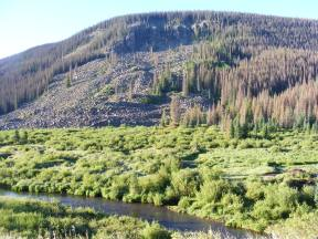 The mesa above Elk Creek