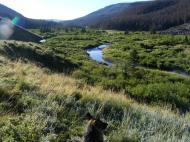 Leah overlooking Elk Creek in the South San Juan Wilderness