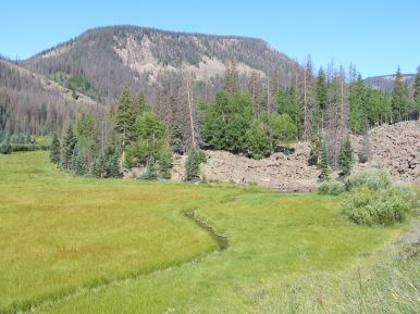 A rock slide in Second Meadows