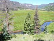 A last look at Second Meadows