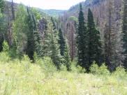 The Elk Creek valley