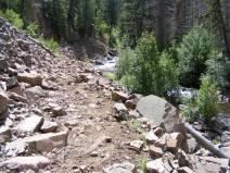 Elk Creek Trail next to the creek of the same name