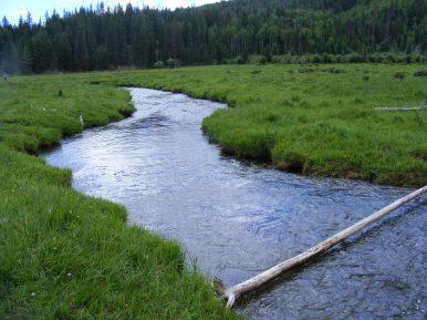 Elk Creek in First Meadows