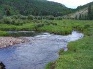 Looking downstream on Elk Creek in First Meadows