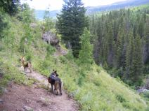 Draco and Leah on the Elk Creek Trail in the Rio Grande National Forest