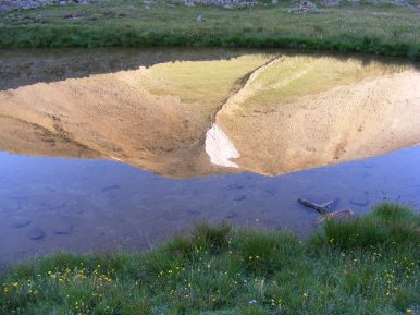 A small reflecting pond near the headwaters of Silver Creek