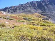 Why I love late Summer; Horn Fork Basin