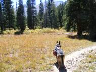 Leah on the Horn Fork Trail
