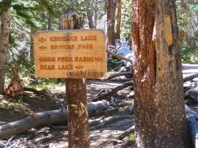 Junction of the Horn Fork and Kroenke Lake Trails in the San Isabel National Forest