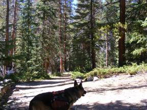 Leah on the Kroenke Lake Trail