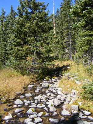 Inlet to the lower Waterdog Lake