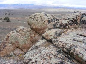 Granite boulders covered with numerous species of lichen