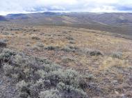 Looking towards Sawtooth Mountain