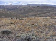 Rolling hills adjacent to Hartman Rocks