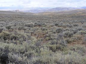 Clouds over the vast sagebrush sea that engulfs the Gunnison Country