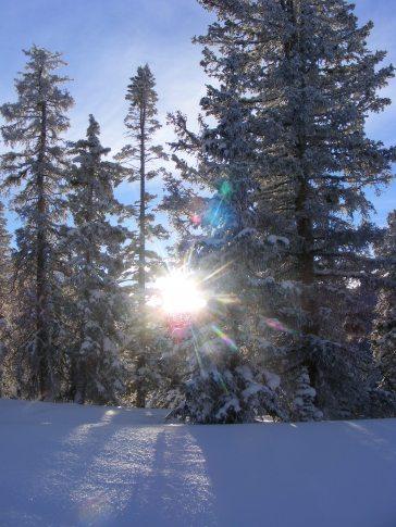 Sunburst over Monarch Pass