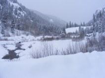 Gold Creek near Spring Gulch