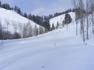 Soft, snowy meadow on Willow Creek