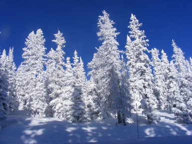 Bluebird day on the Old Monarch Pass road after a snowstorm