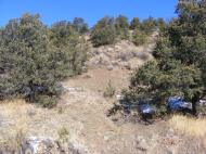 Pinons and bare ground in an unnamed gulch near Wellsville on the north side of the Arkansas River