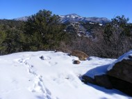 A bit of snow in the foothills above the Arkansas River