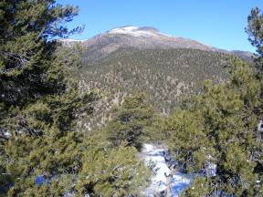 Pinon forest above the Arkansas River in western Fremont County
