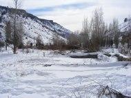 Looking downstream along East Elk Creek
