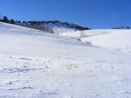 Tracks across the snow