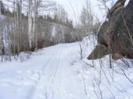 Skiing along Willow Creek