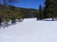 Gold Creek near New Dollar Gulch