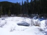 Snowy meadow on Quartz Creek