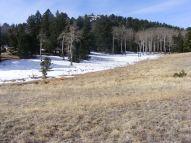 Snowy meadow along the Stultz Trail