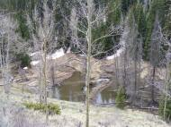 Beaver dams and ponds on West Red Creek