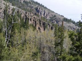 Hoodoos in the brecca above East Elk Creek, note also the green freshly budded leaves on the cottonwood