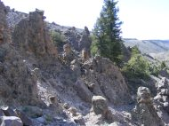 Hoodoos cut out of West Elk breccia on East Elk Creek
