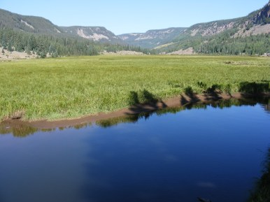 Cobalt Elk Creek and verdant Second Meadows