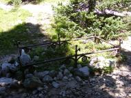 Possibly an old grave in Pomeroy Gulch