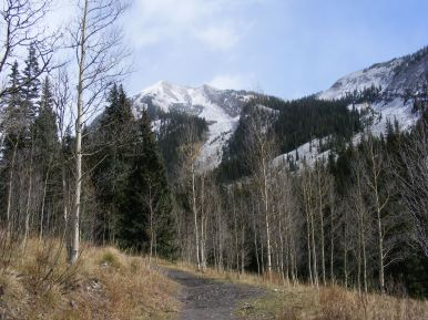 The Copper Creek Trail in the Maroon Bells-Snowmass Wilderness