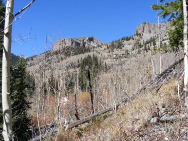 The slopes above Mill Creek in the West Elk Wilderness