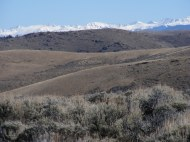 The Sawatch Range seen beyond the rolling hills of the sagebrush steppe about the Gunnison Country