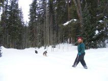 Lady Dog and Sheba heading down the ski trail, with the author posing near Gold Creek Campground